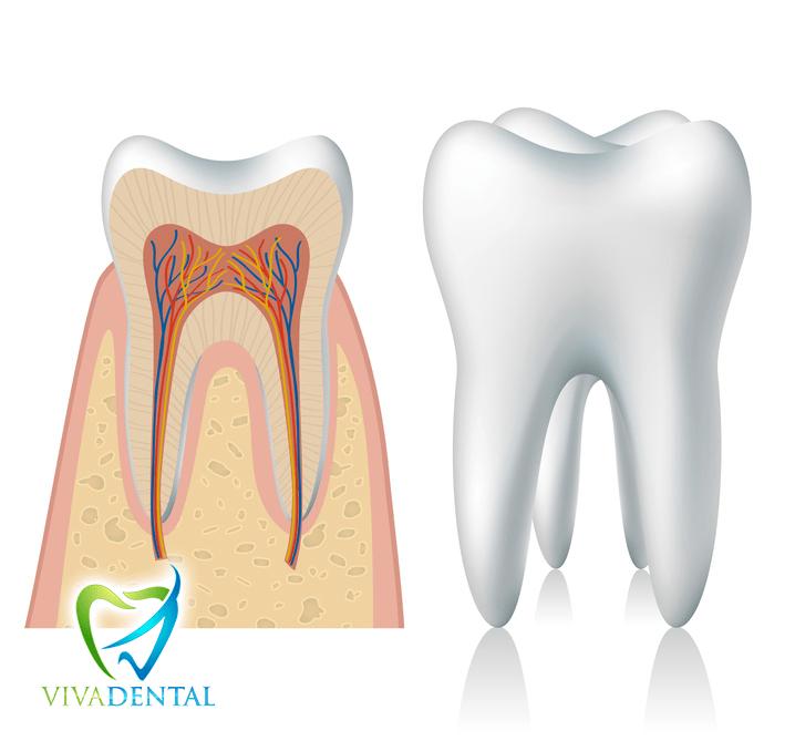 Zahnschmerzen im Urlaub lassen sich nicht immer vermeiden - Tipps zur Hilfe